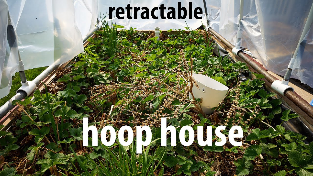 Raised Bed Hoop House Plans on pvc hoop greenhouse plans, raised beds from found materials, raised garden hoop, printable greenhouse plans, raised garden beds designs, garden bed plans, raised bed building plans, simple greenhouse plans, raised bed planting plans, raised bed planter box plans, raised bed greenhouse plans, raised bed gardening plans,