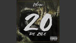 20 de Zile