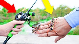 Fishing w/ GIANT LIVE GRASSHOPPERS (Live Bait Fishing)