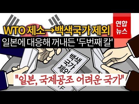 한국도 '백색국가'에서 일본 제외…어떻게 바뀌나 / 연합뉴스 (Yonhapnews)
