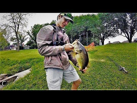 Awesome Bass Fishing, Sugar Land TX - Ep. 4