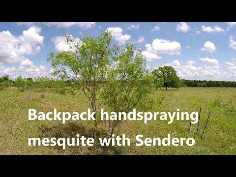 Backpack Handspraying Mesquite with Sendero