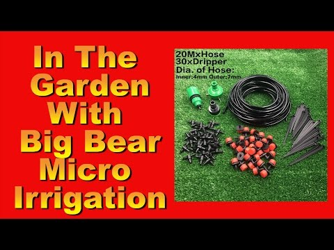 In the Garden with Big Bear  : Micro Irrigation