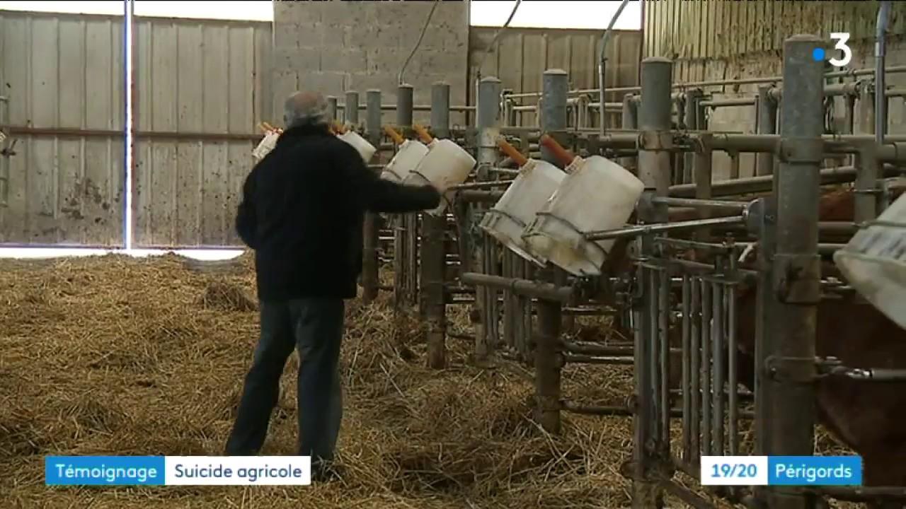 Face Au Suicide Des Agriculteurs De Dordogne La Solidarité YouTube - Chambre d agriculture de la dordogne