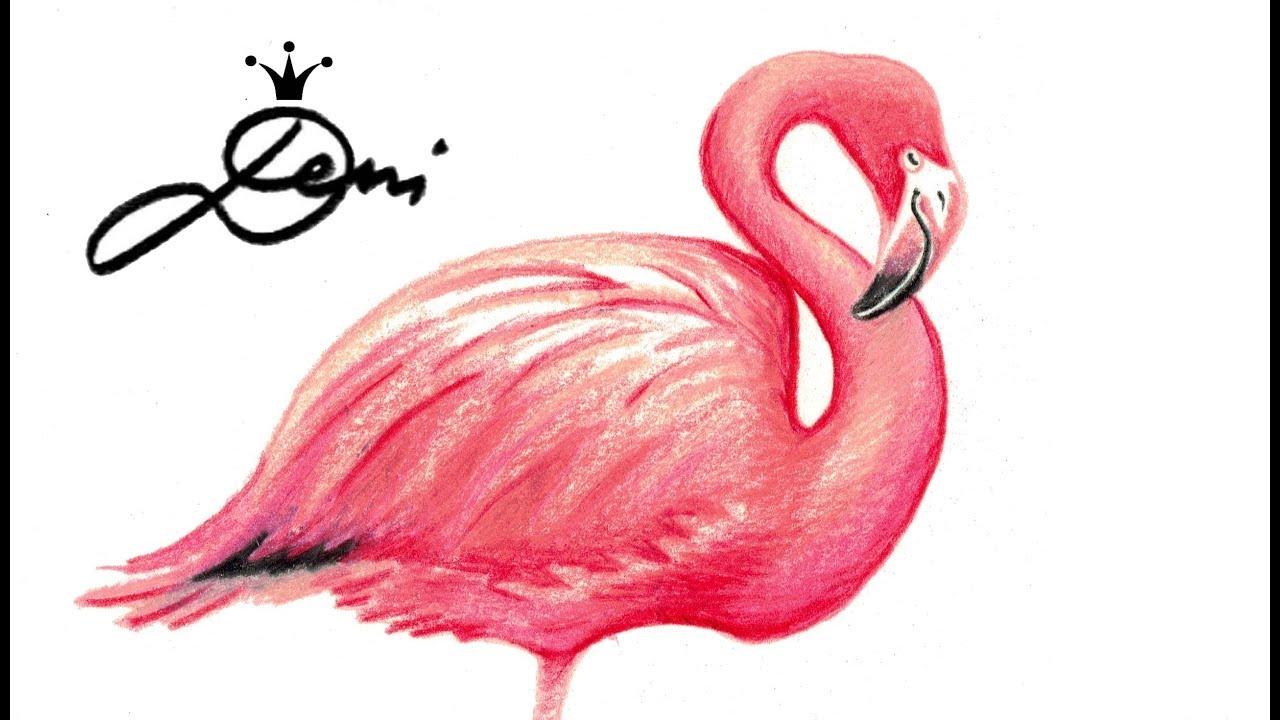 Bildergebnis Fur Flamingo Vorlage Flamingo 4