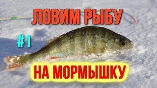 Мормышка Что делать на льду и Как ловить рыбу Зимняя рыбалка часть 1