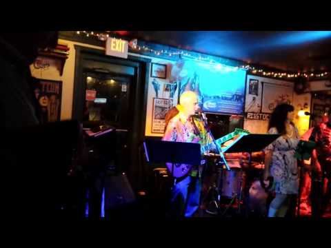 Don Dannemann of the Cyrkle, Red Rubber Ball Live at Bridgeport Rib House 10/18/15