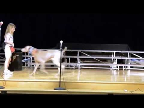 Who Let the Dogs Out - Makaylee and Dusty Talent Show 1st Grade - Dog Trainer