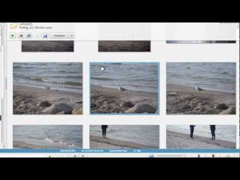 bilder-in-picasa-horizontal-oder-vertikal-spiegeln