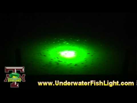 texas a&m & underwaterfishlight - underwater lights to attract, Reel Combo