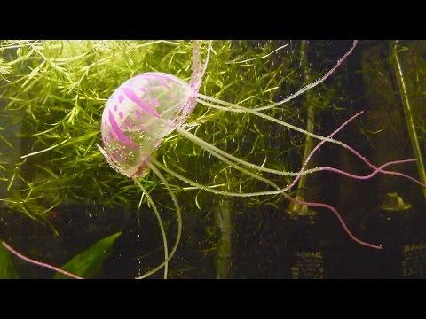 🐠Посылка с AliExpress: Медуза для аквариума