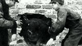 EL GHETTO DE VARSOVIA (Segunda guerra mundial)
