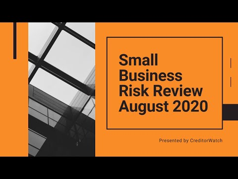 Small Business Risk Review August 2020