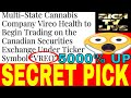 NEW CANNABIS IPO 🔥VREO🔥+ Secret Pick Revealed