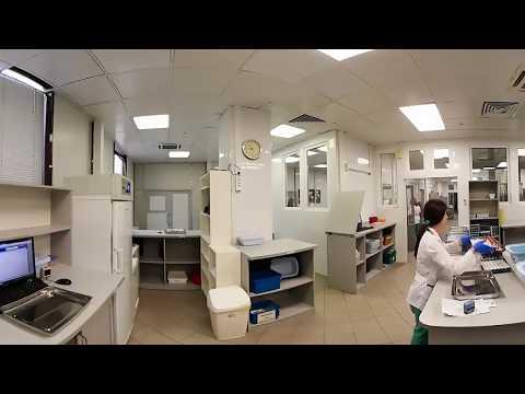 Виртуальная экскурсия по лаборатории ИНВИТРО