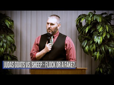 Judas Goats 🐐 Vs Sheep 🐏 - Flock Or A Fake❓