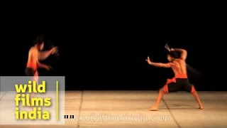 Dani Pannullo Dance Theatre Co. from Spain performs in India