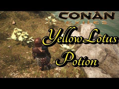 Conan Exiles Yellow Lotus Potion Youtube