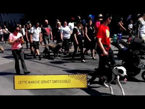 Montréal Anti-BSL March - 2016-09-04