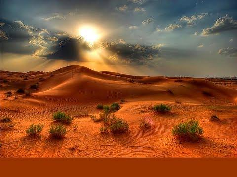দেখুন নিজেকে মহাজ্ঞানী বলায় মুসা (আ:)কে খিজির (আ:) দ্বারা আল্লাহর শিক্ষা দানের চমৎকার ঘটনা