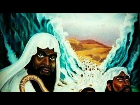 """We are God's Chosen People, """"Black People"""" we are the Israelite's"""