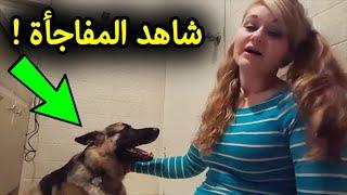 عائلة اشترت كلب جديد، وعندما رآه الطبيب البيطري اتصل على الشرطة.. ولما عرفوا السبب كانت المفاجئة .!!