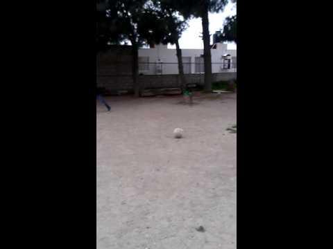 Los Mejores De Sahagun futball