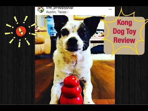 kong-dog-toy-review