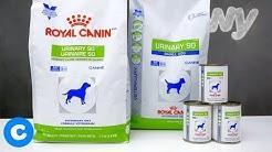 Royal Canin Prescription Urinary SO Dog Food