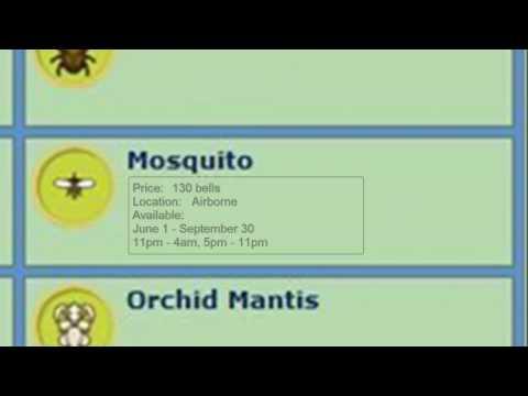 Animal Crossing City Folk Bug Guide