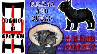 Одежда для собак!Посылка с Алиэкспресс!Комбинезон для собак!Французский бульдог!