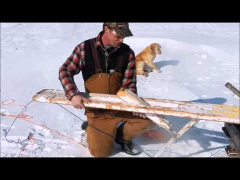 Setting A Gill Net Under The Ice