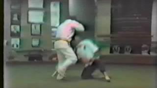 Master Seiyu Oyata - tuite demonstration 3x3