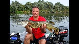 МИКРО-РЕЧКА! Да сколько здесь рыбы под этой корягой?! Сплав по реке Судость  1-я Часть