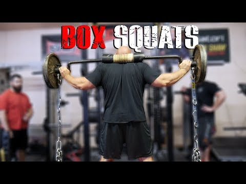BOX SQUATS WITH CHAINS | TRAINING HIGHLIGHTS | 4X WSM BRIAN SHAW