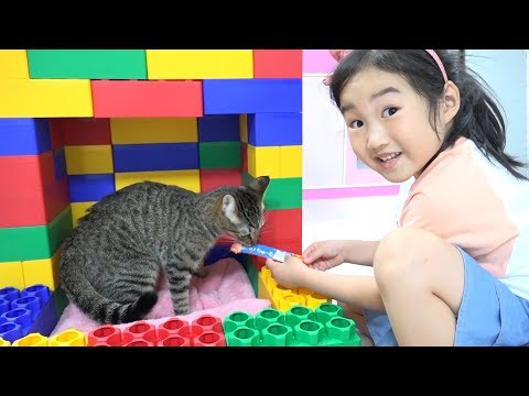 Boram Color Brick Block Cat House