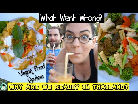 Vegan Restaurant Review Fuck-Up + The Real Reason We're in Thailand   Koh Samui
