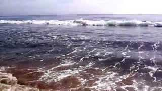 Pacific ocean, beautiful waves. Sounds of Nature (no music)