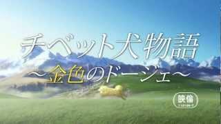 8月3日からDVDリリース開始 【作品概要】 世界的注目を集めるアニメスタ...