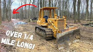 Clearing Trees to Extend Ridiculously Long Driveway! (Again!!!)