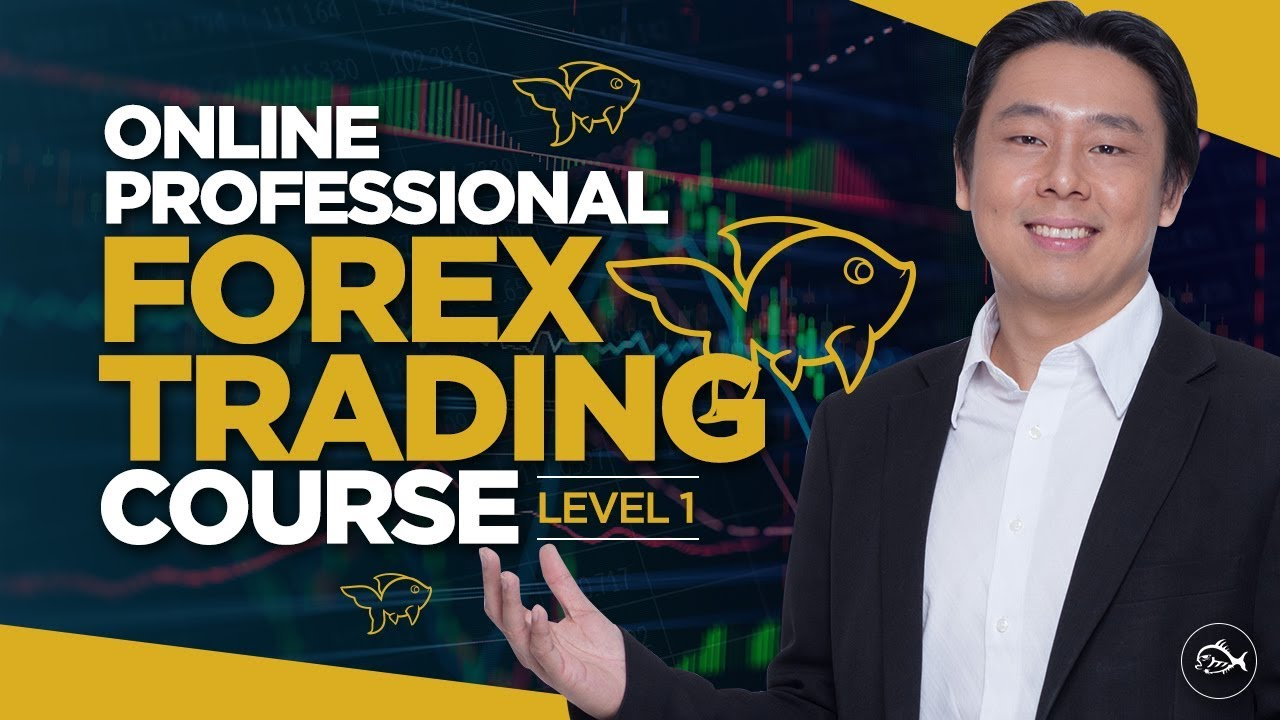 Professional Forex Trading Course Lesson 1 By Adam Khoo