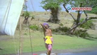 Bhakta Tukaram Songs - Padavelli Potondira - Akkineni Nageshwara Rao, Anjali Devi - Ganesh Videos