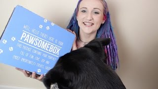 PAWSOME BOX FT. BEAR #3