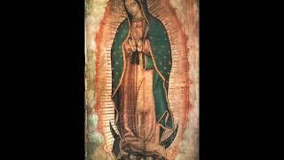 Datos Interesantes Sobre La Virgen De Guadalupe- Sangre y Agua
