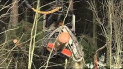 Hyvä metsänhoito vähentää tuulituhoja