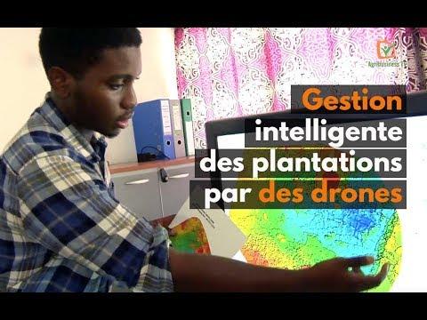 Côte d'Ivoire : Gestion intelligente des plantations par des drones
