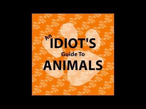 Bush Dog vs. Desert Rain Frog: An Idiot's Guide To Animals Episode 5