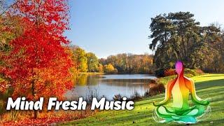 Mind Fresh Music Ever || Jorico - Island Music || Use HeadPhones 🎧 || Dhruv Rathi