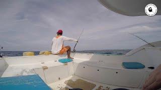 Trolling en koraalvissen op Bali, Indonesië - amateurvisser.nl