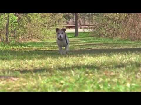 Quin At Saratoga Spa State Park